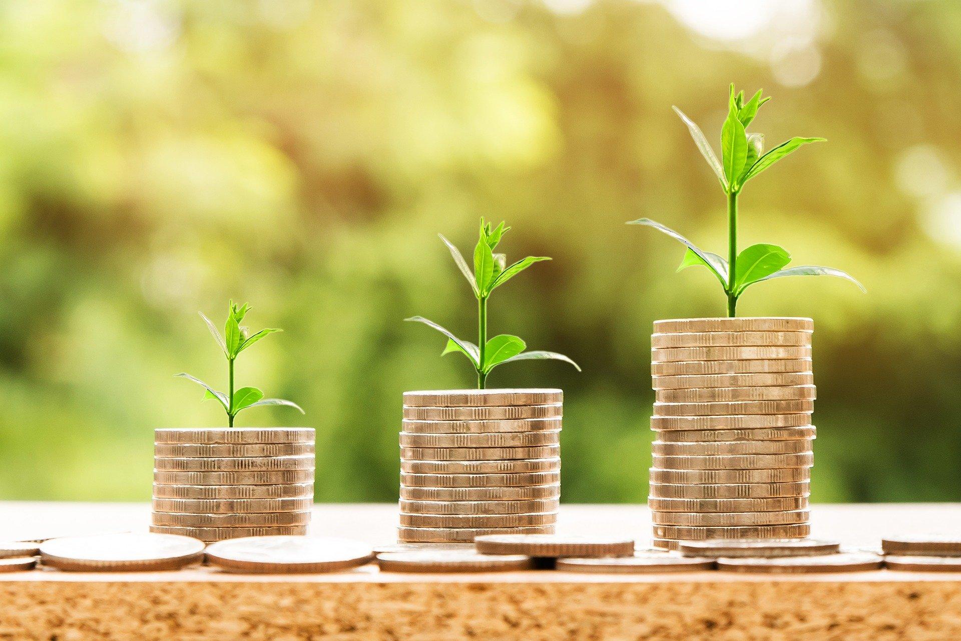Nachhaltige Wirtschaft